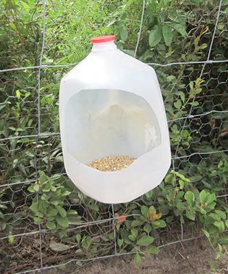 Кормушка для куриц своими руками из 5 литровой бутылки