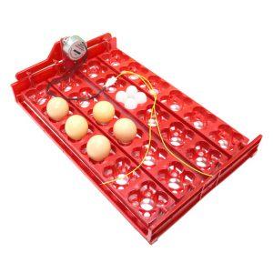 eggstray-36