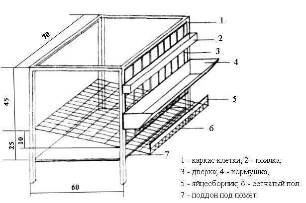 Размеры клетки для бройлеров своими руками чертежи фото