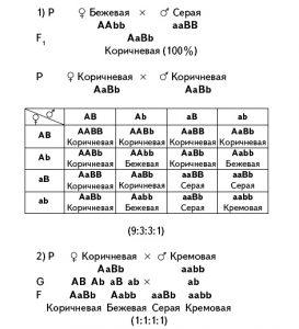 tablitsa-skreshivaniya