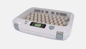 avtomaticheskij-inkubator-bytovoj