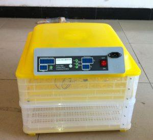 chto-takoe-inkubator