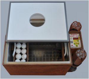 inkubator-blits-48