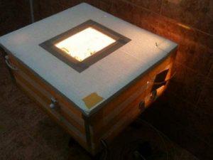 inkubator-iz-penoplasta-svoimi-rukami