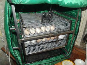 inkubator-tgb280