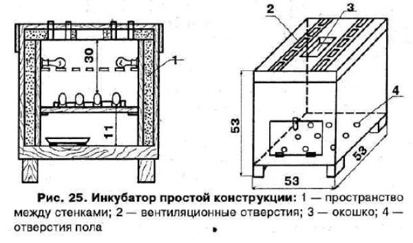 Как сделать инкубатор своими руками чертежи и