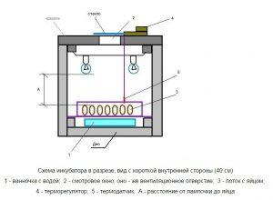 shema-inkubatora-dlya-perepelov-iz-penoplasta